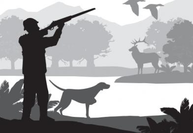 Corte Constitucional prohíbe la caza deportiva en Colombia